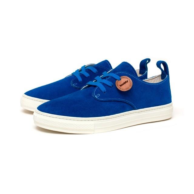 Corgi Low Blue