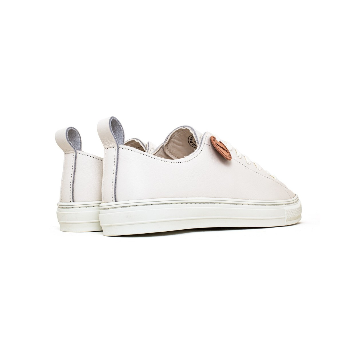 Bull Terrier Smooth Low White