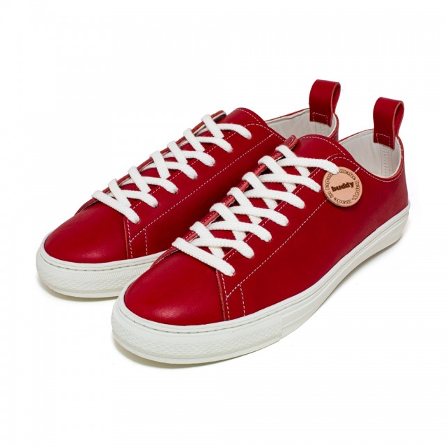 Bull Terrier Smooth Low Red