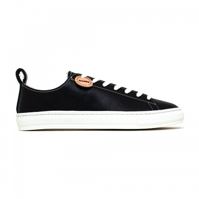 Bull Terrier Smooth Low Black